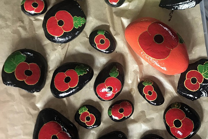 Eye Rocks decorated with poppies